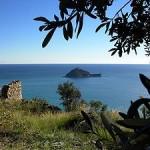 300px-Isola_Gallinara-regione_Monti