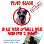 pluto-beach
