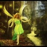 The_Walk_Of_The_Fairies_by_maiarcita