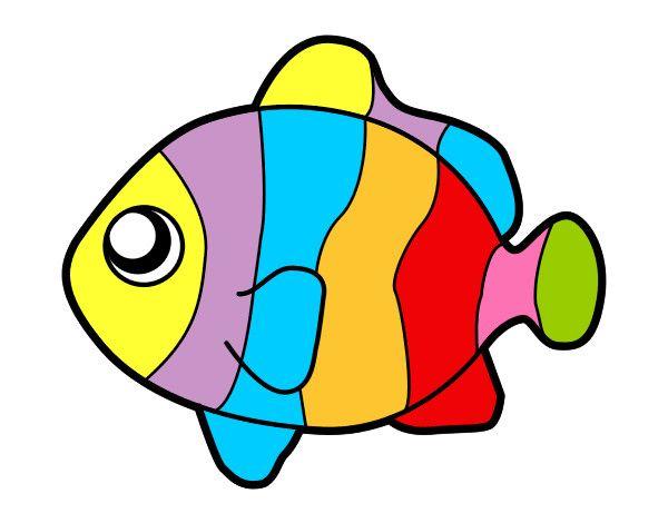 Alassio il laboratorio della biblioteca for Immagini pesciolini