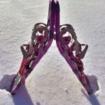 snowshoe-588853_1280