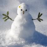 snow-man-1227476_960_720